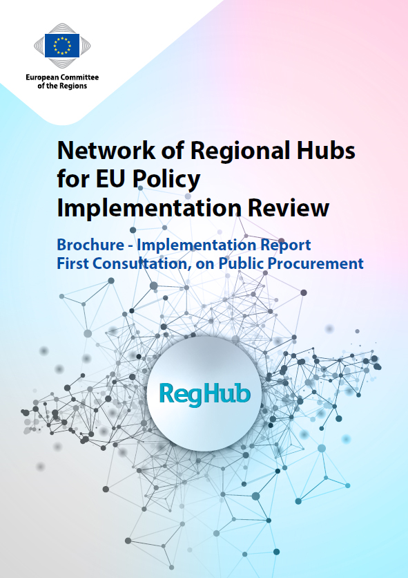 Network of Regional Hubs for EU Policy Implementation Review