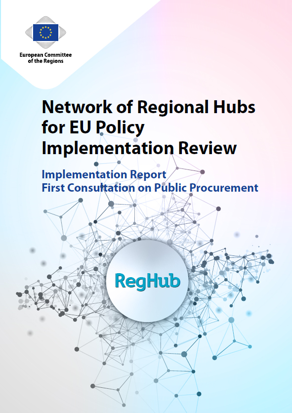 Network of Regional Hubs for EU Policy Implementation Review - Report