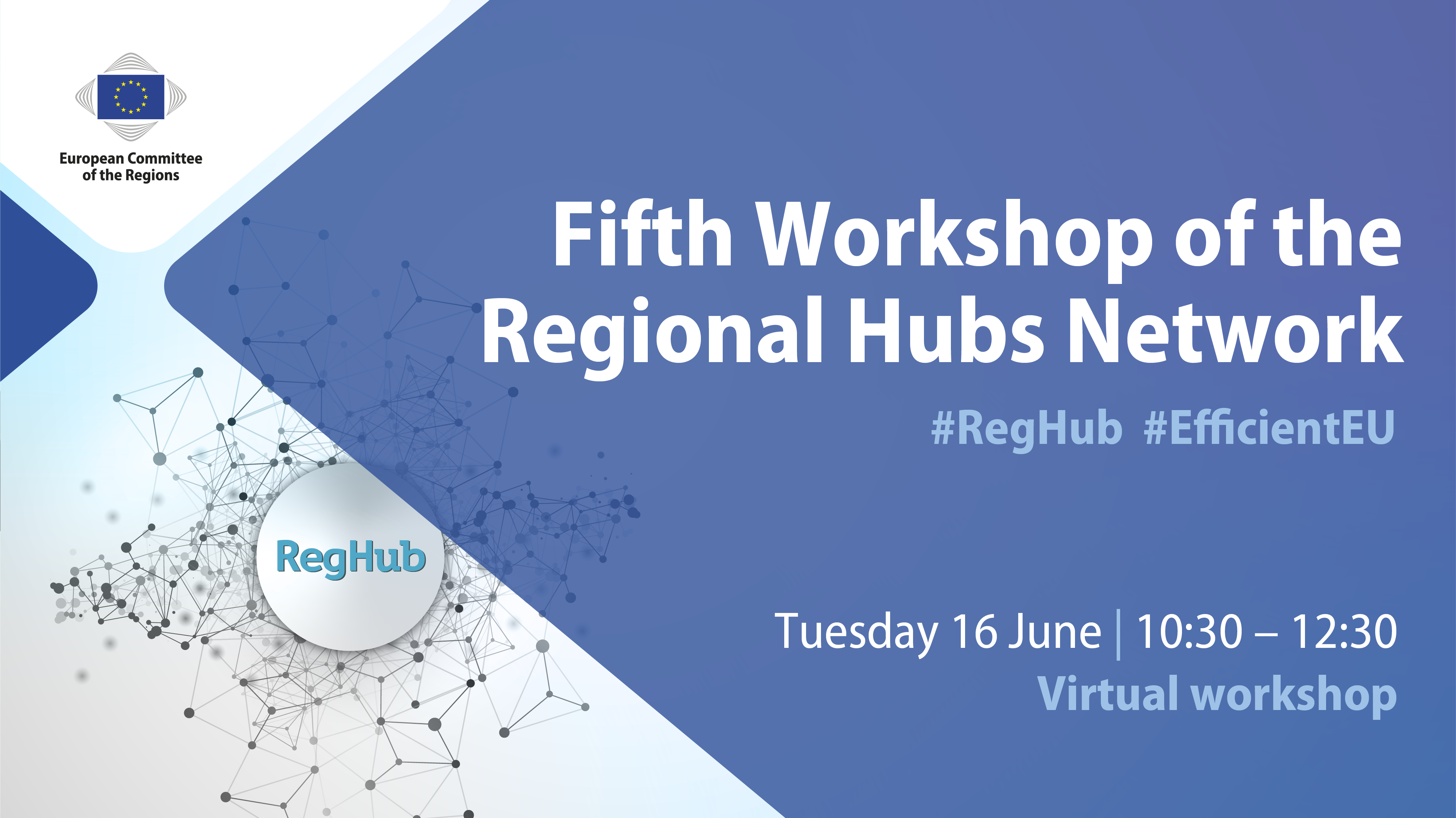Fifth RegHub workshop (Virtual Workshop)