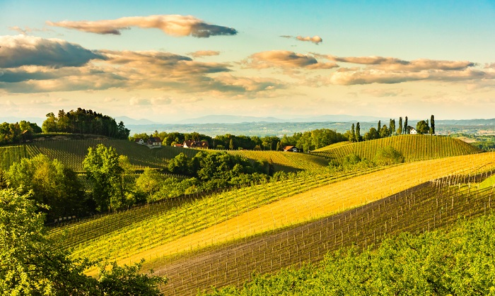Agroecology: the answer to Europe's agricultural, social and environmental challenges